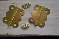 Brass / Gold Finish Hinges