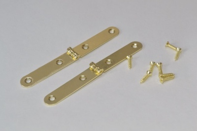 Brass Plated Strap Hinge (pair with screws)