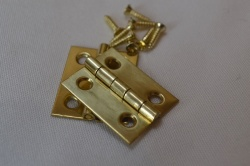1'' Polished Solid Brass Hinges (pair)
